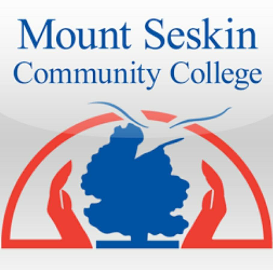 mount seskin school